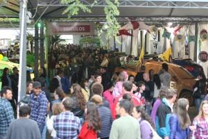 Festival de Compras 2014
